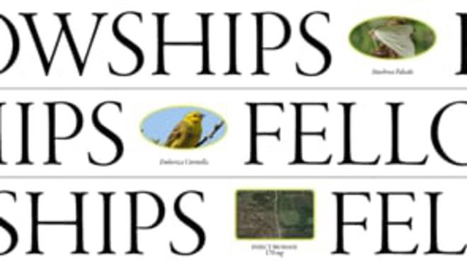 FELLOWHIPS_PROMOTION